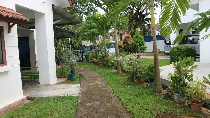 GardenEarly